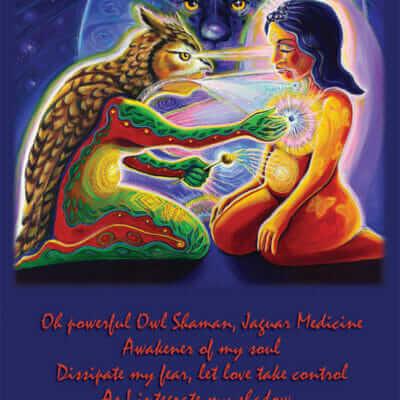 Katherine Skaggs Owl Shaman Jaguar Medicine Altar Card